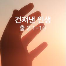 Thumb_1000511(111)