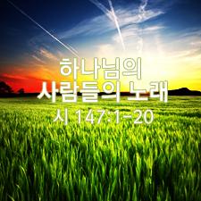 Thumb_1000110123(31)